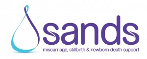 sands Logo horizontal
